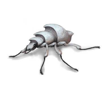 Concept piece for a beetle based on the Sydney Opera House.